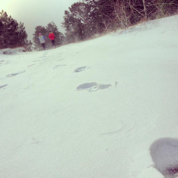 läckert md snöspår