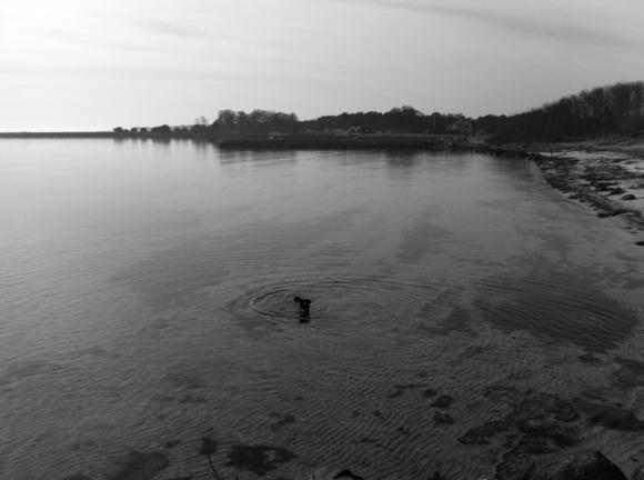 havet svartvitt